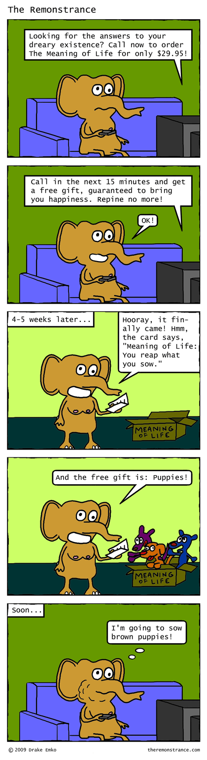 The Meaning of Life - The Remonstrance comic for 2009-02-16. Word of the day: repine