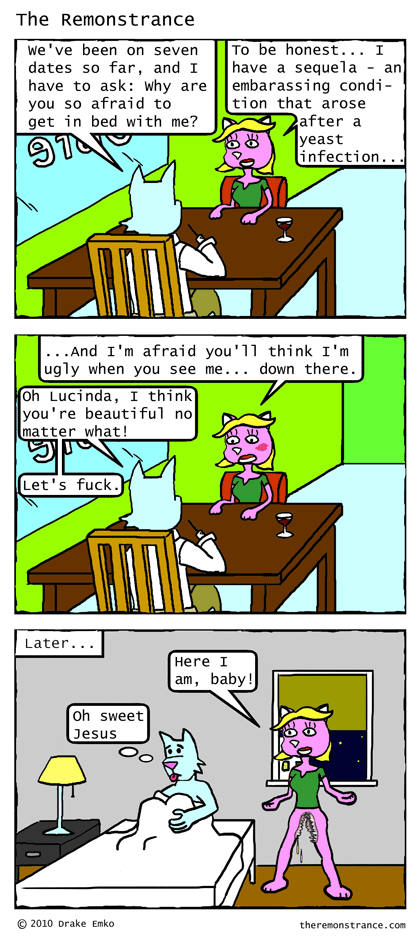 A Woman Has Her Secrets - The Remonstrance comic for 2010-07-19. Word of the day: sequela